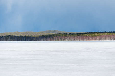 Dramatic sky above the snow-covered frozen Kuito lake, coniferous forest in the background. Winter country landscape. Karelia North, Lapland