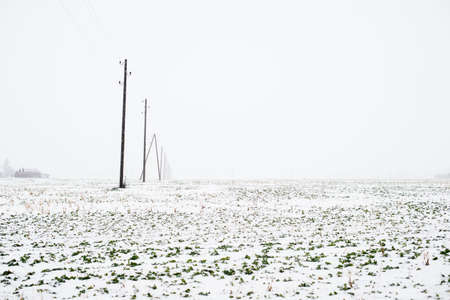 A view of the snow-covered country field with a forest in the background on a cloudy winter day, Latvia