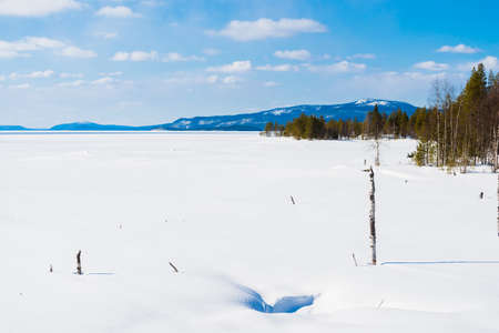 Panoramic view of the frozen lake. Fir trees close-up. Snow-covered mountains and coniferous forest in the background. Clear blue sky. Kola Peninsula, Murmansk region, Polar Circle, Karelia, Russia