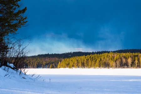 Dramatic blue sky above the snow-covered frozen Kuito lake, coniferous forest in the background. Evergreen trees close-up. Storm clouds. Karelia North, Lapland