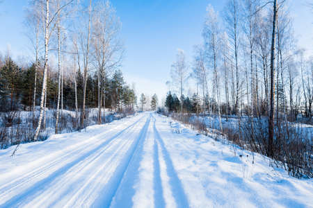 Snow-covered rural road through the field and frosty birch and fir trees on a sunny winter day. Car tracks in a fresh snow. Ulbroka, Latvia