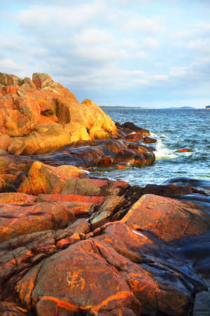 Trees and rocky sea shore of the Hanko Peninsula. Gulf of Finland. Dramatic sky. Pure nature, ecotourism, travel destinations, environmental conservation. Panoramic view Stock Photo