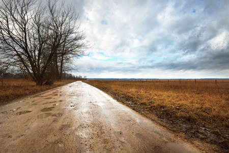 Dramatic sky above the field before the rain, dirt road close-up. Latvia. Atmospheric spring rural scene. Nature, seasons, ecology, environment, climate change, fickle weather 写真素材