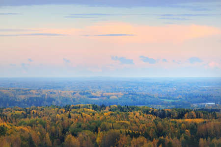 Picturesque panoramic aerial view of the colorful autumn forest. Golden, red, orange, yellow, green leaves. Spruce, pine, birch, maple trees. Dramatic sunset sky. Nature, ecology, environment, tourism