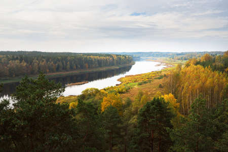 Panoramic aerial view of the majestic pine forest and bends of Daugava river in autumn. Daugavas loki nature park, Latgale, Latvia. Ecology, ecotourism, recreation, travel destinations, landmark