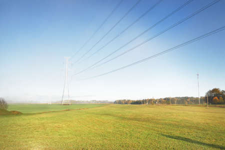 Panoramic view of the green plowed agricultural field at sunrise. Trees in a morning fog, electricity line close-up. Clear sky. Farm, industry, ecology, nature, environmental damage, technology