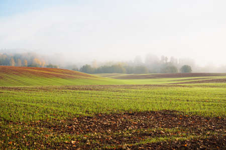 Green hills, plowed agricultural field with tractor tracks and forest at sunrise, close-up. Sunlight, fog, haze. Autumn landscape. Idyllic rural scene. Nature, ecology, seasons, ecotourism. Germany 스톡 콘텐츠