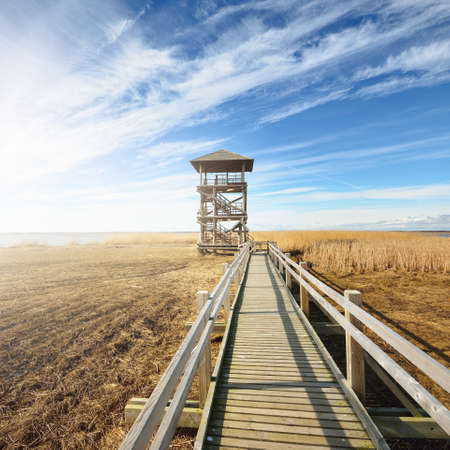 A wooden pathway to the bird watching tower on the lake on a sunny spring day, Netherlands. Shallow water. Clear blue sky with cirrus clouds. Environmental conservation, ornithology. Panoramic view
