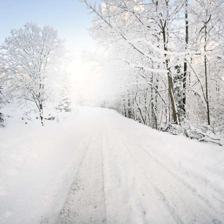 Country road through snow-covered forest and field after a blizzard. Clear sky. Idyllic rural scene. Panoramic view. Christmas, logistics, dangerous driving, off-road, transportation Standard-Bild