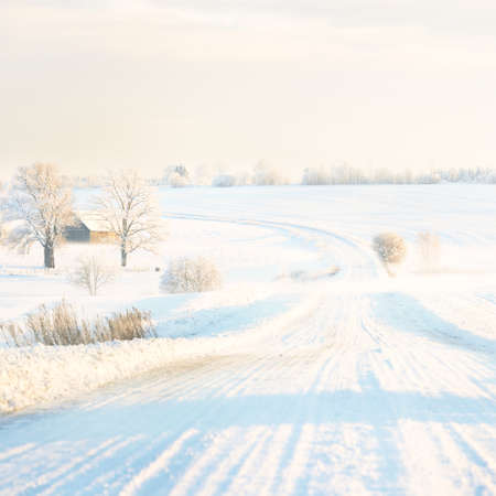 Country road through snow-covered field after a blizzard at sunset. Clear sky, golden light. Idyllic rural scene. Panoramic view. Christmas, logistics, dangerous driving, off-road, transportation Фото со стока
