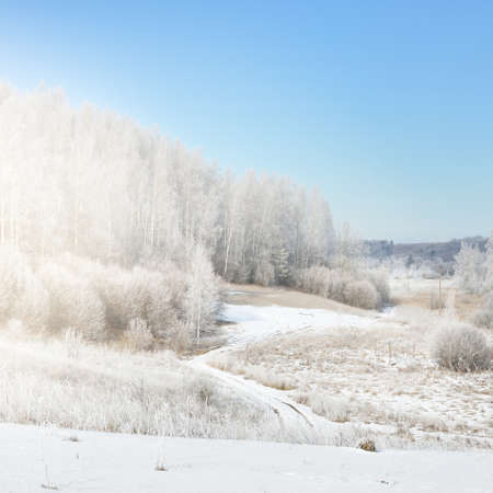 Panoramic aerial view of snow-covered forest hills on a clear day. Trees in a hoarfrost. Winter wonderland. Idyllic landscape. Seasons, ecology, environmental conservation, tourism, christmas. Russia