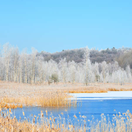 Panoramic aerial view of snow-covered forest hills and frozen blue lake on a clear day. Trees in hoarfrost. Winter wonderland. Idyllic landscape. Ecology, environment, ecotourism, Christmas. Russia Фото со стока