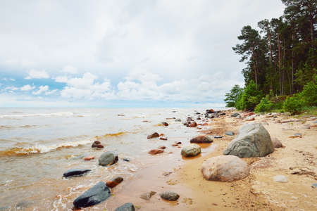 Panoramic view of the rocky Baltic sea shore, pine forest. Summer. Gulf of Riga, Latvia. Dramatic sky, storm waves. Fickle weather. Vacations, travel destinations, ecotourism. Nature, seascape