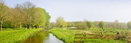 Idyllic spring landscape. Polder dutch canal on a green field, deciduous trees, alley, bicycle road. Netherlands. Nature, travel destinations, vacations, ecotourism, recreation