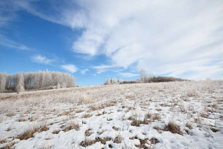 Frozen meadow covered with hoarfrost in winter Russia