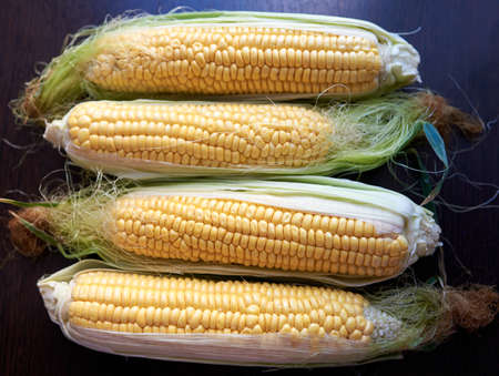 Four golden ears of corn with leaves. Low key. Top view Banque d'images