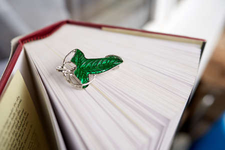 The green brooch on hte book. The Leaves of Lorien were brooches given by Galadriel to the members of the Fellowship of the Ring at the end of their stay at Lothlorien