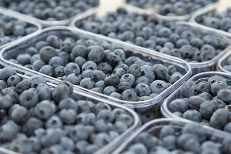 Fresh blueberries on the table at the farmer's market counter. Stockfoto