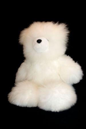 White teddy bear on black photo