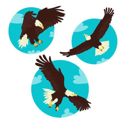 eagle flying: Three Eagles Illustration