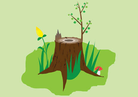 stump: Old stump Illustration