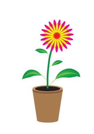 varicoloured: Varicoloured flower Illustration