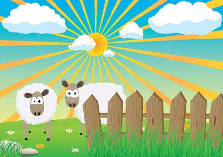 Two sheep Stock Vector - 7381618