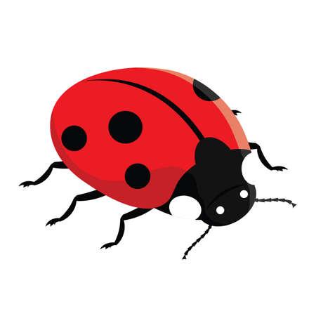 Red ladybug Stock Vector - 8885026