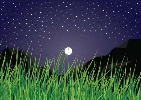 cielo estrellado:   Cielo estrellado Vectores