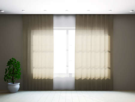 Room window with curtains and a plant near the wall Stock Photo - 16659418