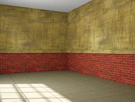 home addition: The large empty hall with old wall