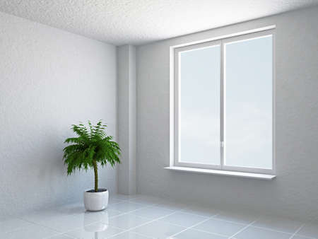 The empty room with plant and window Stock Photo - 18984089
