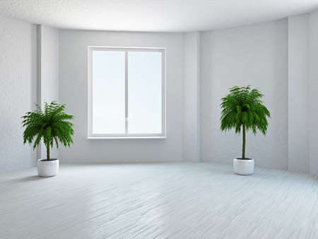 living room window: The empty room with plant and window