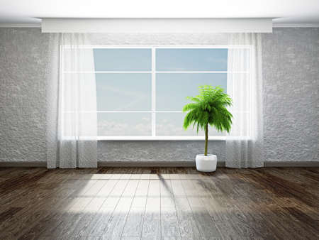 drapes: The empty room with plant near the window