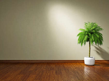 A  green plant near the plastered wall Stock Photo - 19475522