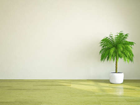 A  green plant near the plastered wall photo
