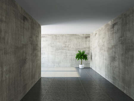 Corridor with old walls and a palm Standard-Bild