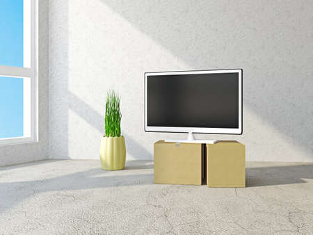 living thing: Room with boxes and with TV Stock Photo