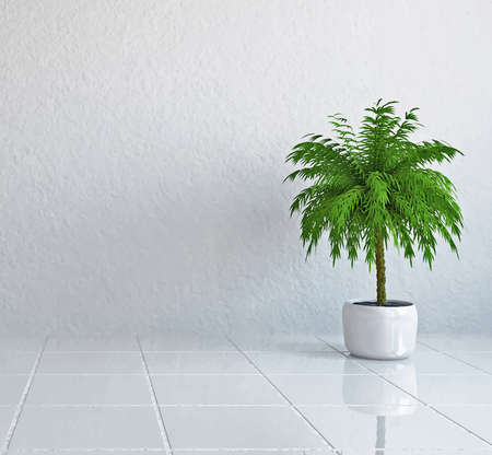 Vector illustration: interior of the room with the palm near the concrete wall Illustration