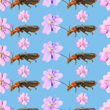 Nature Pattern with Flowers and Beetles Stock Vector Illustration