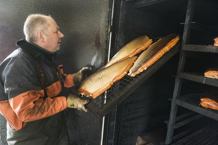 metal grate: Side view of mature fisherman arranging chopped fish on shelf