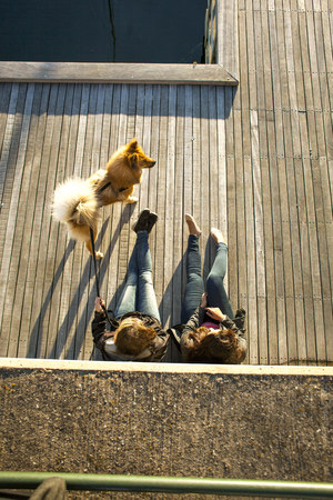 sweden resting: High angle view of multi-ethnic couple with dog relaxing on boardwalk outdoors