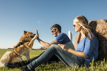 sweden resting: Happy couple playing with dog at park against clear blue sky