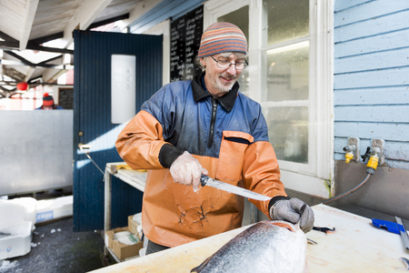 Mature man in protective workwear filleting large fish in fishing industry
