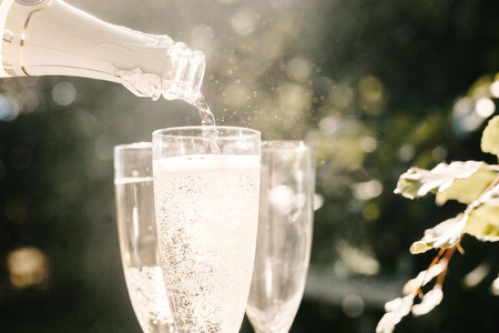 Champagne being poured in glass at graduation party LANG_EVOIMAGES