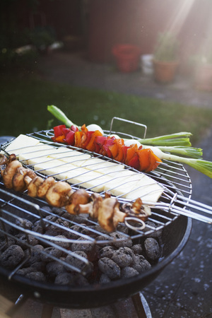 verticals: Fresh vegetable skewers on barbecue grill LANG_EVOIMAGES