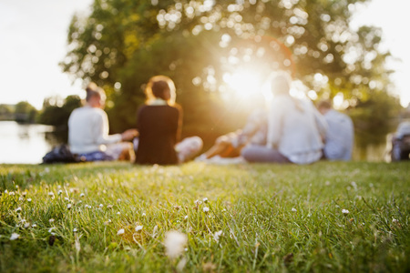 Group of friends sitting at grass on sunny day