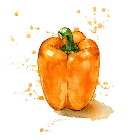 Hand painted orange pepper.
