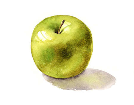 Green apple, hand painted with watercolours