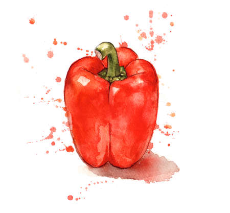Red pepper, hand painted with watercolours Stok Fotoğraf